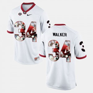 #34 Herschel Walker Georgia Bulldogs Men Player Pictorial Jersey - White